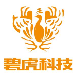 碧虎科技官方店