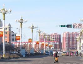 吉林省白山市靖宇县和谐街南北路路灯杆广告