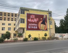 河南新乡市平原新区韩董庄镇出入口墙体广告