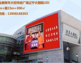 辽宁沈阳市沈河区青年大街市政府广场辽宁大剧院LED广告